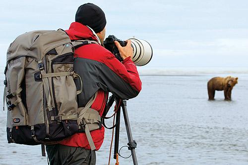 Fotografía de naturaleza y vida salvaje